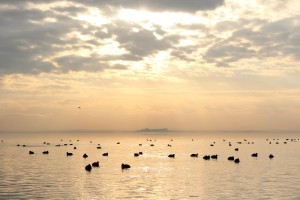 umbria-tour-guide-trasimeno 2